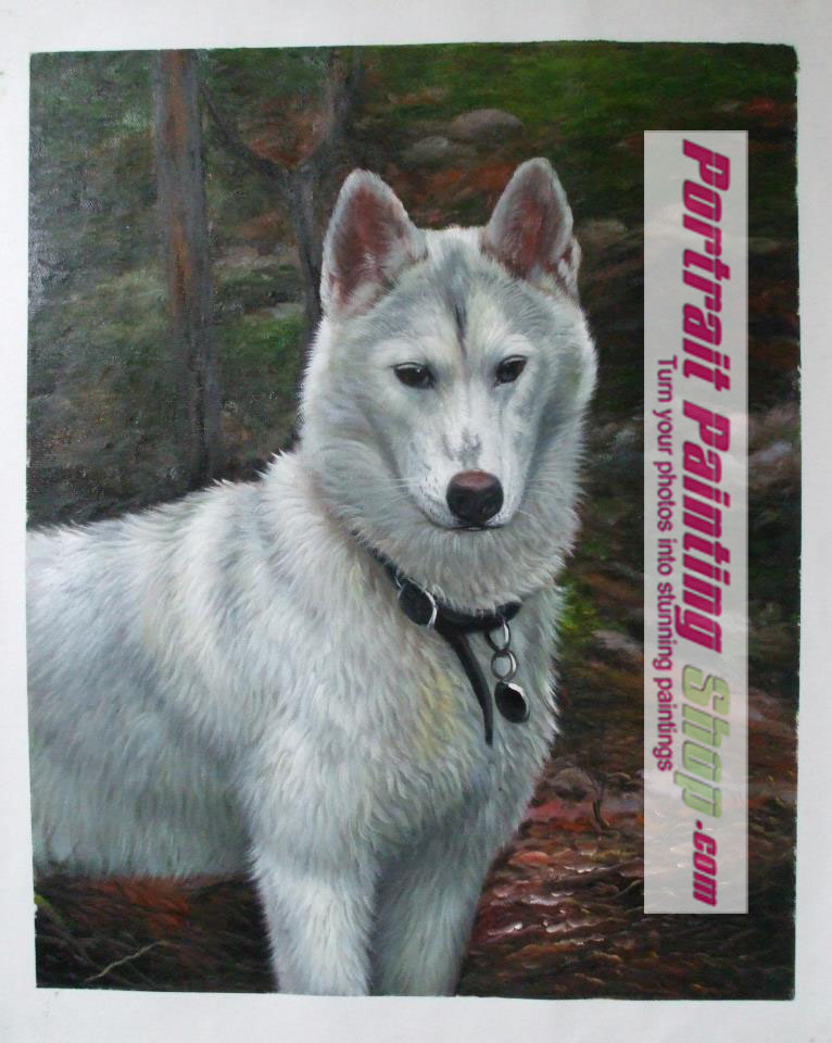 Pet Oil Paintings- Custom pet portrait painting from photo